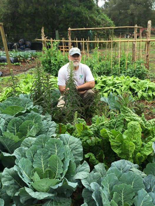 Shown is Palmer Kinser with his collards and other fall/winter vegetables.
